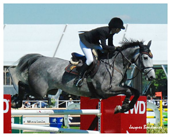 Global Champions Tour Chantilly 20