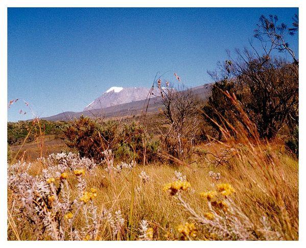 kilimandjaro 10