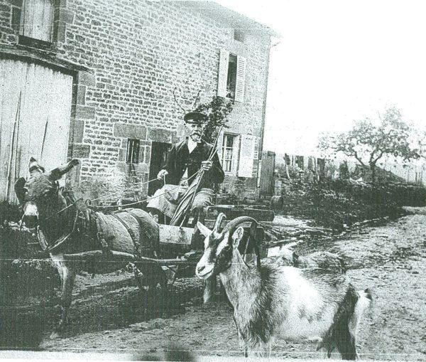 Flassigny 1918 chèvre Lorraine