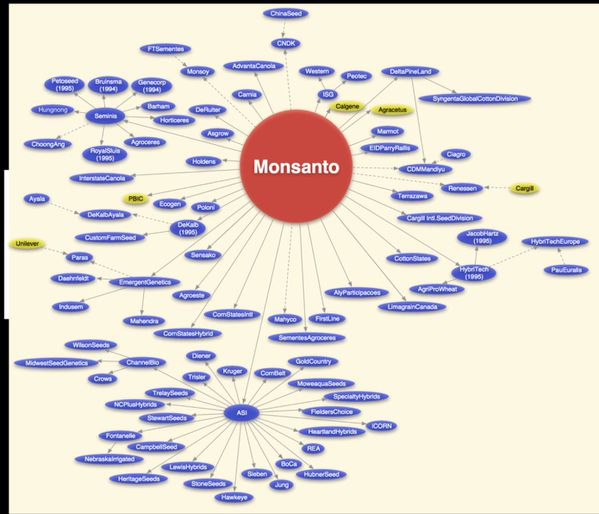 Consolidation-of-seed-companies-Monsanto-corporate-dominati