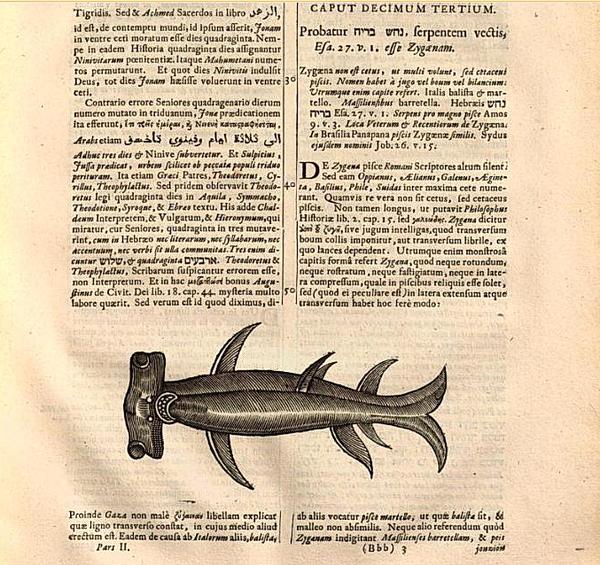 Zygaena-Samuel-Bochart-p.-746.png