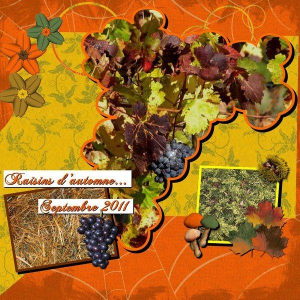 raisins-d-automne.jpg