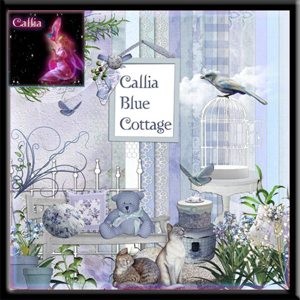 http://img.over-blog.com/600x600/3/80/11/81/Preview-blue-cottage.jpg