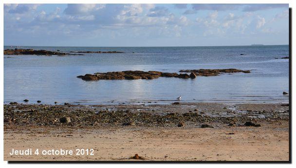 2012-0410-0224.jpg