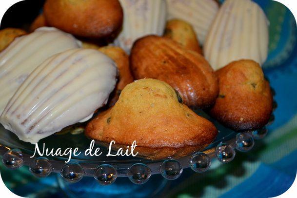 madeleines aux myrtilles séchées et coques chocolat blanc