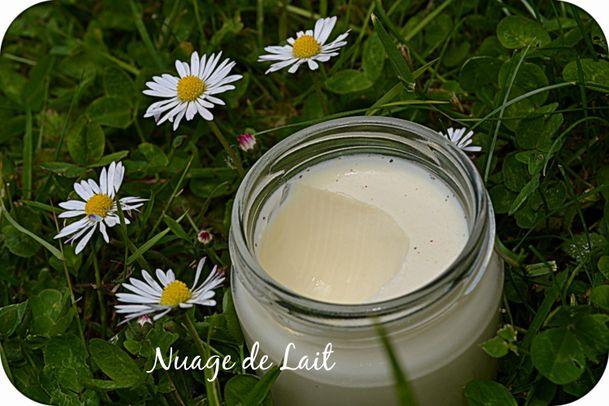 yaourts à la réglisse