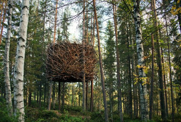 THE-TREE-HOTEL-birds-nest-architecture-on-ARCSTREET-mag-by-.jpg