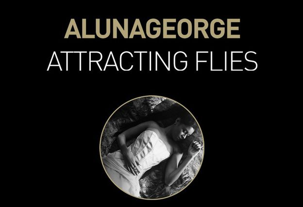 ALUNA-GEORGE-ATTRACTING-FLIES.jpg
