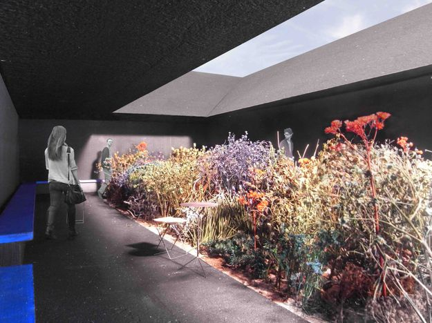 central-garden-space-serpentine-gallery-2011-peter-zumthor-.jpg