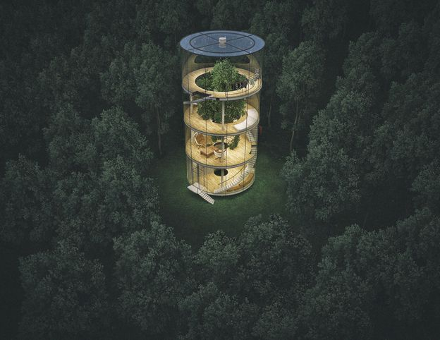 TREE-IN-THE-HOUSE-by-A-MASOW-DESIGN-STUDIO--2013-O-copie-2.jpg