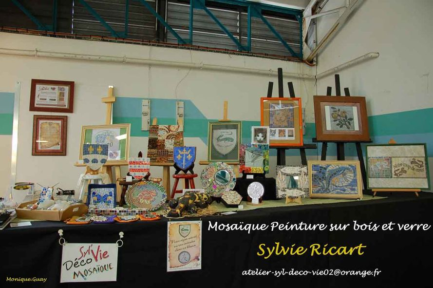 Arts-Rencontres 7893-Sylvie-Ricart