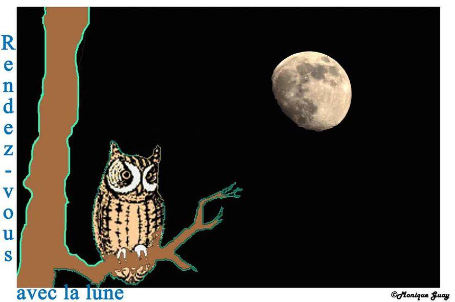 hibou-lune-2