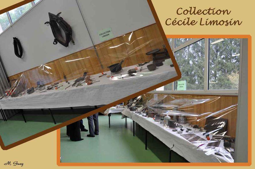 collection-Cécile-Limosin rec
